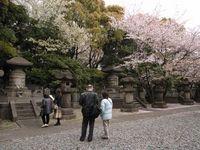 徳川霊廟配置1
