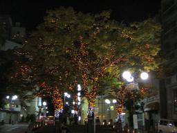 麻布十番の夜景